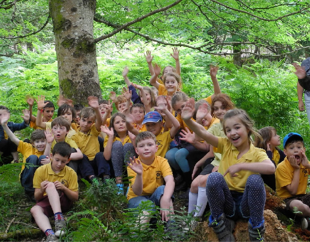 forest school, woodland education, wild play, outdoor education, a touch of the wild, forest learning, learning, devon, activities, team building, exeter, nature, school trip, educational