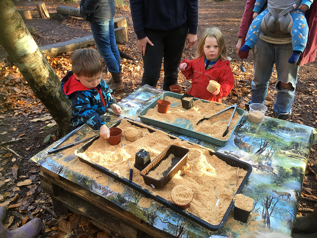 birthday party exeter, forest party, school, devon, woodland, parties, toddler group, wild tots, holiday club